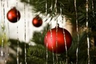 945866_christmas_tree_close_up